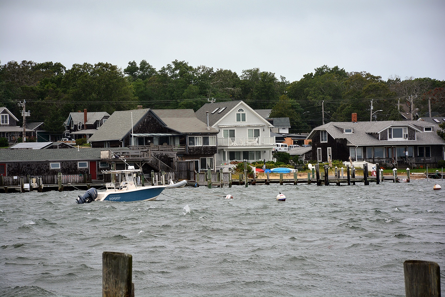 Harbor in Oak Bluffs